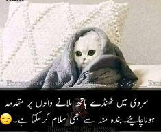 Popular funny jokes in urdu winter Ideas Funny Memea, Funny Facts, Crazy Funny, Hilarious, Cute Jokes, Very Funny Jokes, Urdu Funny Poetry, Funny People Pictures, Funny Statuses