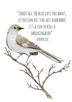 to kill a mockingbird personal Test your knowledge of the classic harper lee novel before go set a watch.