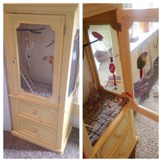Indoor bird aviary/ hutch