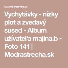 Vychytávky - nízky plot a zvedavý sused - Album užívateľa majina.b - Foto 141 | Modrastrecha.sk