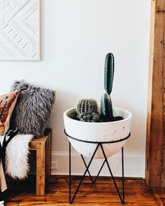 decor | eclectic | bohemian | boho | cactus | cacti | fur pillow | faux fur | desert | california home | house | decoration | plant | pot | modern