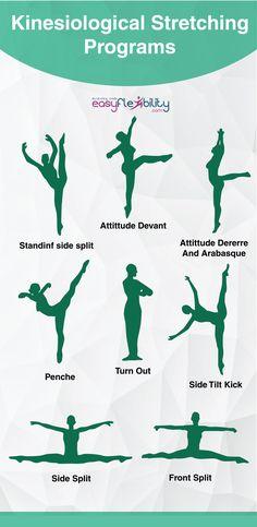 #stretching #ballet #moderndance #flexibility