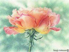 Summerglow by Sonja Johnson