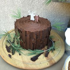 Tree stump cake for my 2yrs old nephew. Lumber Jack party.