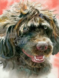 Portie is an Open Edition Giclee Art Print from a watercolor featuring a Portuguese water dog. Like Poodles and several other water dog breeds, PWDs are