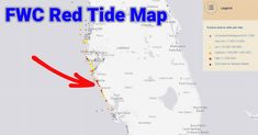 How To Use The FWC Red Tide Map (And Where Not To Target Fish)