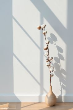 Beige Wallpaper, Plant Wallpaper, Flower Background Wallpaper, Flower Phone Wallpaper, Aesthetic Pastel Wallpaper, Flower Backgrounds, Wallpaper Backgrounds, Aesthetic Wallpapers, Background Ideas