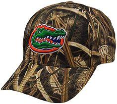 ed826eba7f924 Florida Gators NCAA Top of the World