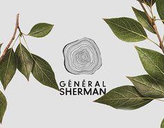Echa un vistazo a este proyecto @Behance: \u201cGénéral Sherman\u201d https://www.behance.net/gallery/27619703/Gnral-Sherman