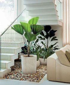 15 unique ideas for indoor garden under stairs balcony garden web. Back Gardens, Small Gardens, Outdoor Gardens, Home Stairs Design, Interior Stairs, Stair Design, Home Design, Interior Design, Inside Garden
