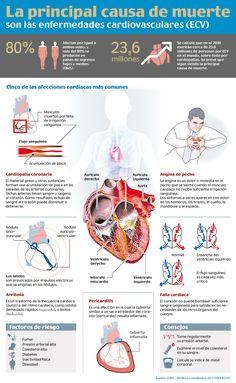 Las enfermedades que afectan al corazón : Las principales causas de muerte son las enfermedades cardiovasculares #ECV