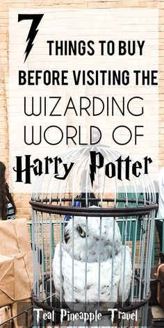 7 things to buy before going to the Wizarding World of Harry Potter