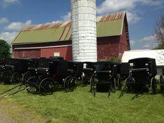 Ohio Amish Group Tours, LLC - Holmes County,Ohio - Amish Tours of Ohio by Amish Heartland GROUP Tours, LLC