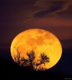 Full Moon Rising, Stuttgart, Germany