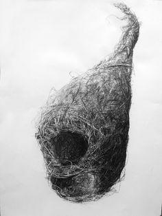 Bird Nest No.9, Charcoal on paper, 100 x 70 cm. Charcoal drawing by Liu Ling from Art Is http://artis.sg - #realism #nature