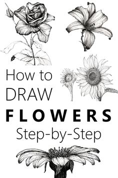 Learn to draw flowers with a pen and pencil and create your own beautiful floral art Many flower drawing examples and an easy guide flowerdrawing drawing floralart flowerart - Pencil Sketch Drawing, Pencil Art Drawings, Doodle Drawings, Art Drawings Sketches, Disney Drawings, Horse Drawings, Sketches Of Nature, Pencil Drawings Of Flowers, Animal Drawings