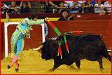 El Fandi: http://www.toroticket.com/72-el-fandi