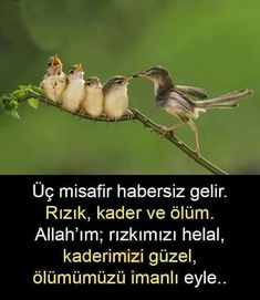Islam Muslim, Allah Islam, Learn Turkish Language, Ramadan Mubarak, Meaningful Words, Cool Words, Life Lessons, Spirituality, Instagram Posts