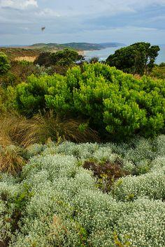 Great Ocean Road, Victoria, Australia. Photo: KarlGercens.com, via Flickr