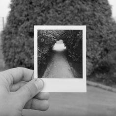 L'immagine scivolò dalla fessura portando via con sé la mia infanzia.   La Polaroid uscì in bianco e nero. Come se anche lei non avesse più voglia di colori.