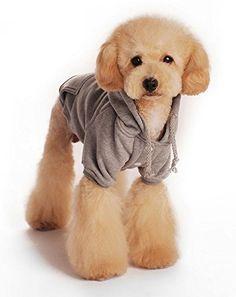 Hoodie für deinen Hund. Süß, flauschig und hält warm. Kosten: 5,59€