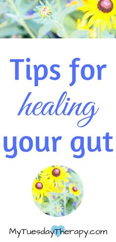 Healing your gut is vital to your health. Check out these tips for improving your gut health.