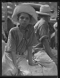 San Sebastian Puerto Rico Vicinity Farmer S Son On A Road