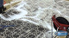 Rug Cleaners Naples