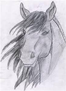 horse head drawings - Bing Images