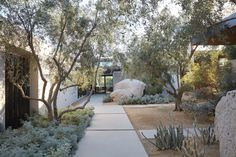 Front Of House Desert Landscaping Exterior Design Modern Landscaping, Front Yard Landscaping, Landscaping Ideas, Landscaping Software, Dry Garden, Indoor Garden, Gravel Garden, Garden Tips, Garden Paths