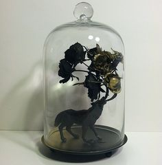Not really a terrarium but still a cool thing in a glass case