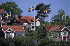 Swedish summer houses