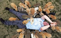 yedg:  emeraldarcbreon:  zenaxaria:  lost-and-found-box:  There's a small island in Japan called Okunoshima with thousands of adorable rabbits! All photos from the (more informative) Telegraph gallery.  are you fucking kidding me  Sign me UP OH MY GOD. OwO  bury Duht in that place
