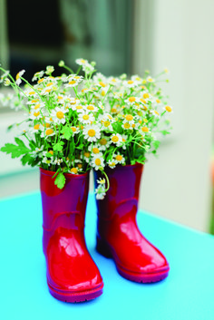 Use those old rainboots to spruce up your garden! Rustic Farmhouse Decor, Farmhouse Homes, Paddington Bear Party, Antique Teddy Bears, 2nd Birthday, Party Planning, Daisy, Planters, Latest Issue