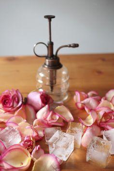 rose water hydrosol | gardenista