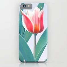 Spring Flowers 6 iPhone Case Cool Phone Cases, Iphone 8 Cases, Iphone 8 Plus, Iphone 11, Case 39, Cool Items, Spring Flowers, Framed Art Prints, Wall Tapestry