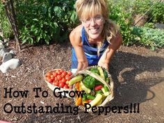 Back To Eden Gardening Secret: How To Grow Peppers!
