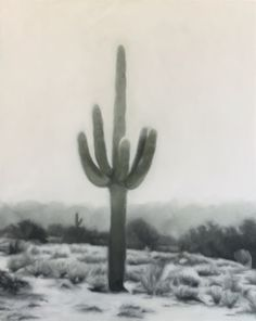 Saguaro Study I Painting Aesthetic Images, Aesthetic Backgrounds, Aesthetic Wallpapers, Photo Wall Collage, Picture Wall, Arizona, Artsy Photos, Love Wallpaper, Fantasy Landscape
