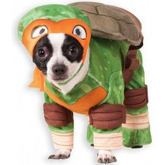 Pet Teenage Mutant Ninja Turtles Michelangelo Costume, Green