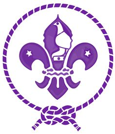 The Boy Scouts Association of Zimbabwe