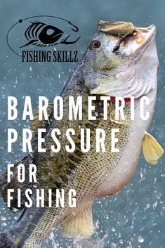 Bass Fishing Tips, Walleye Fishing, Carp Fishing, Best Fishing, Saltwater Fishing, Kayak Fishing, Fishing Boats, Fishing Chair, Fishing Tricks