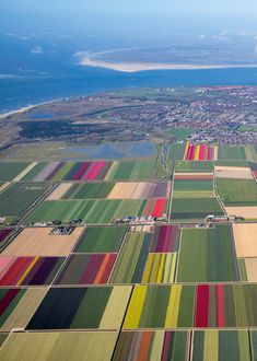 Den Helder, Noord-Holland. Modern Agriculture, Holland Netherlands, Cinque Terre, Belleza Natural, Royal Navy, Nature Pictures, Windmill, Trees To Plant, Beautiful World