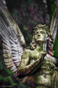 Angel that embodies Strength. Guardian angels are usually depicted this way. They are defenders, messengers but only to deliver messages from God, not to talk to us, bold, and fearless. Cemetery Angels, Cemetery Statues, Cemetery Art, Angels Among Us, Angels And Demons, Male Angels, Statue Ange, Memes Arte, Angel Guidance
