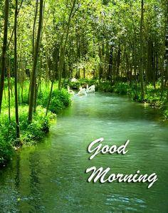 Nature Wallpaper For Morning Good Morning Beautiful Pictures, Good Morning Nature, Good Morning Images Flowers, Good Morning Beautiful Images, Good Morning Cards, Good Morning Images Hd, Good Morning Greetings, Morning Pictures, Good Morning Wishes