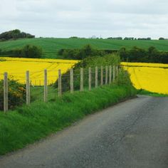 The Great English Road Trip : London to Cornwall - My dream vacation <3