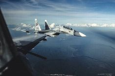 Sukhoi Su 30, Military Weapons, Military Aircraft, Fighter Aircraft, Fighter Jets, Airplane View, Planes, Russia, Birds