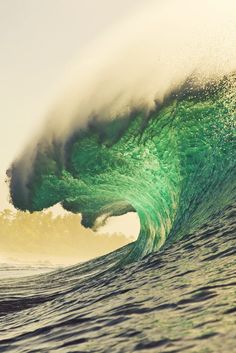 """Massive. Photo: Zak Noyle """