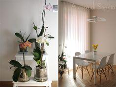 Voglia di Primavera | A casa di Sophia