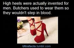 amazing shit :)    Women wear heels now so we don't have to step in the blood of our enemies   Reblogging for that comment