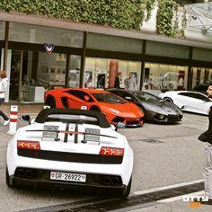 I've found in - which do you prefer? Lamborghini Supercar, Koenigsegg, Maserati, Bugatti, Supercars, Ferrari, Porsche, Audi, Monte Carlo